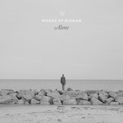 Alone by Woods of Birnam