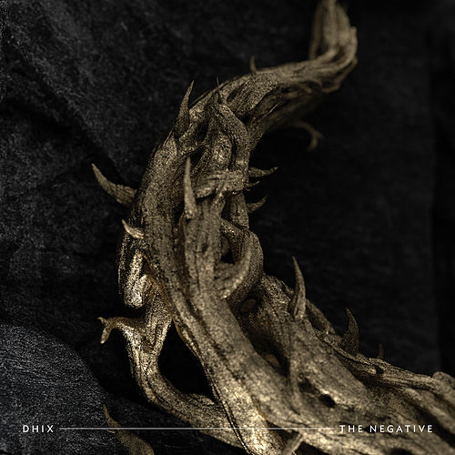 The Negative by Demon Hunter