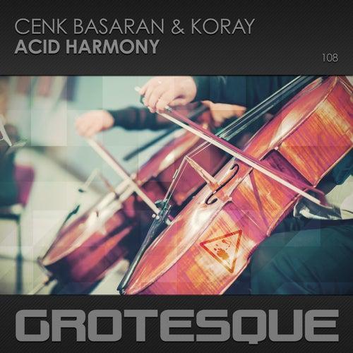 Acid Harmony by Cenk Basaran