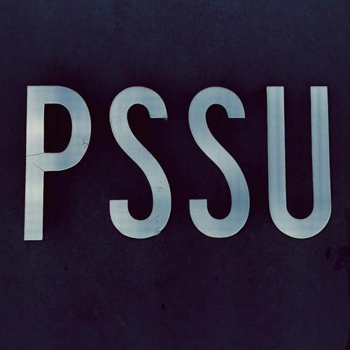Pssu von PSSU