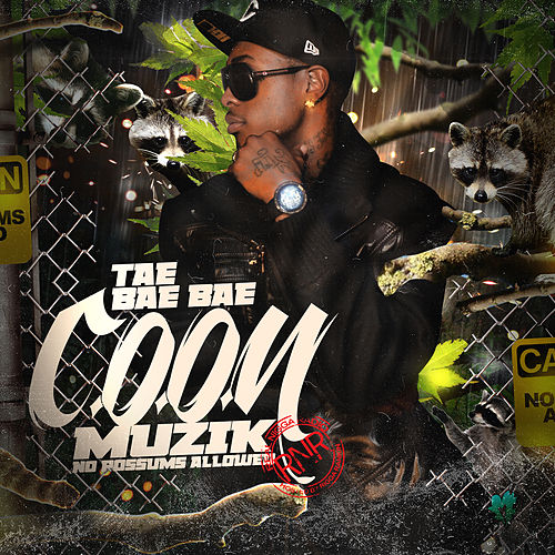 Coon Muzik (No Possums Allowed) von Tae Bae Bae