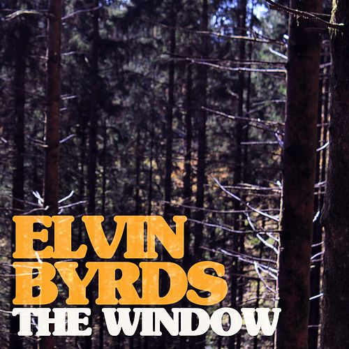 The Window by Elvin Byrds