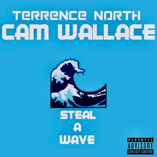 Steal a Wave von Terrence North