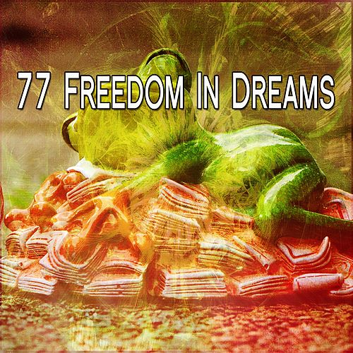 77 Freedom In Dreams de Nature Sounds Nature Music (1)