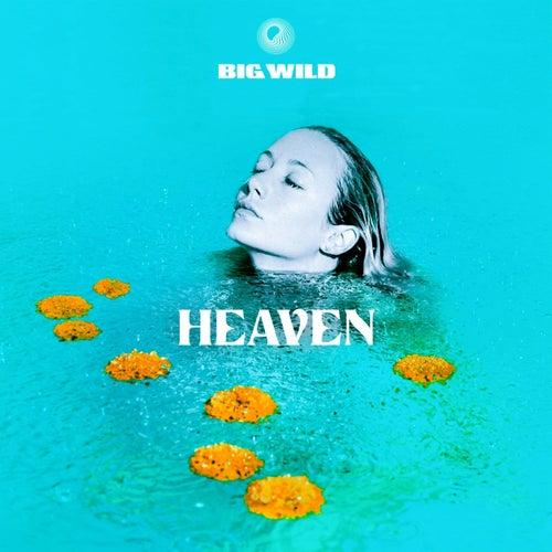 Heaven von Big Wild