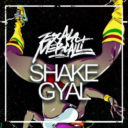 Shake Gyal de Escala Mercalli