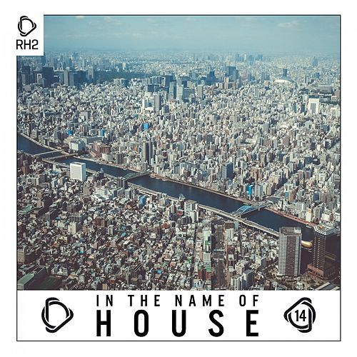 In the Name of House, Vol. 14 de Various Artists