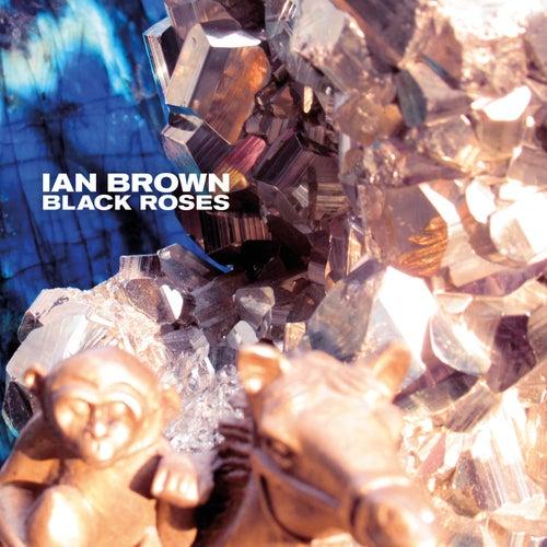 Black Roses by Ian Brown