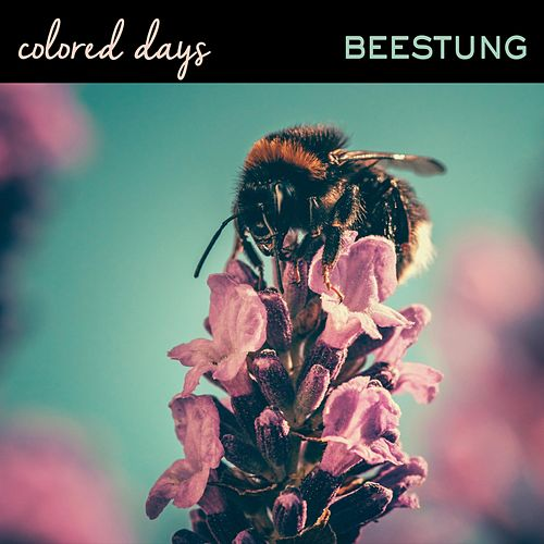 Beestung by Colored Days