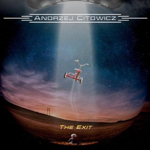 The Exit de Andrzej Citowicz