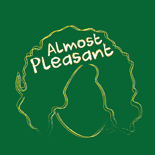 Almost Pleasant de Kyle Falconer