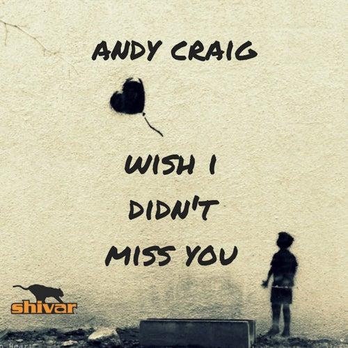 Wish I Didn't Miss You de Andy Craig