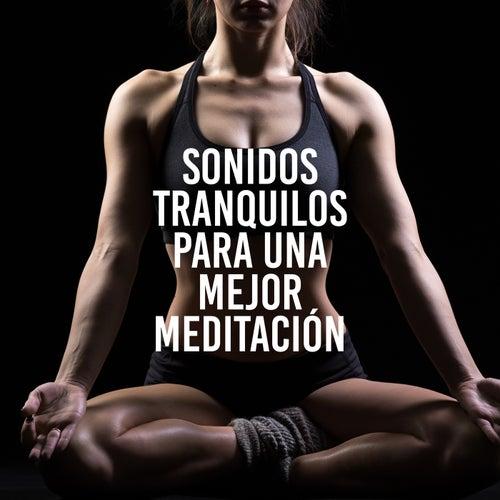 Sonidos Tranquilos para una Mejor Meditación (Sonidos de la Naturaleza para la Relajación, Entrenamiento de Yoga, lluvia Relajante) de Meditación Música Ambiente