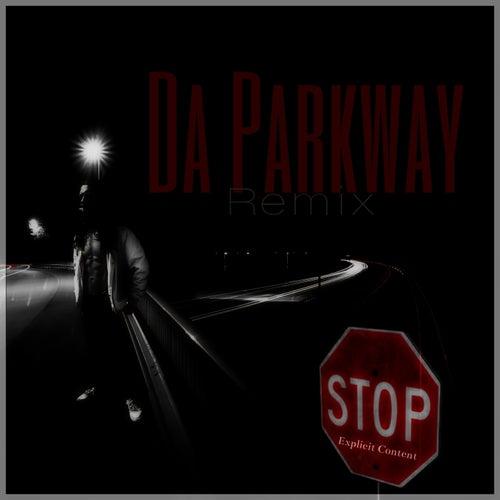 Da Parkway (H-Town Mix) von W3alth