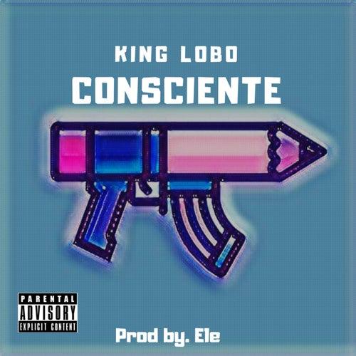 Consciente by Lobo
