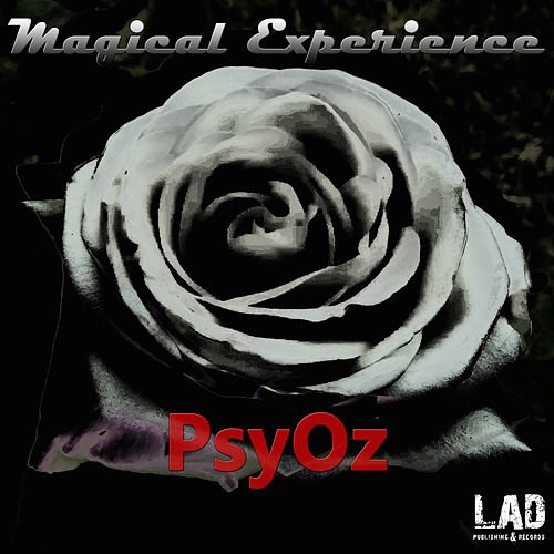 Magical Experience - Single by PsyOz