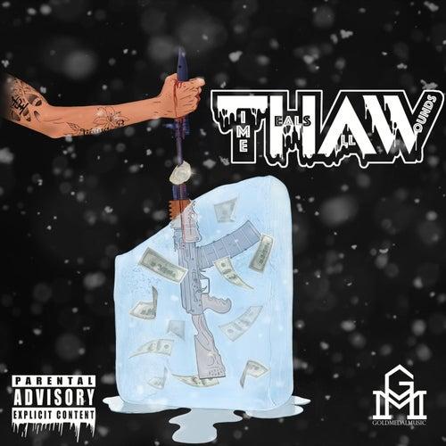 T.H.A.W. by Profit