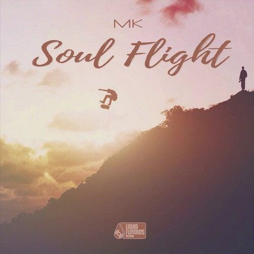 Soul Flight - Single von MK