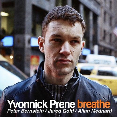 Breathe (Feat. Peter Bernstein, Jared Gold & Allan Mednard) by Yvonnick Prene