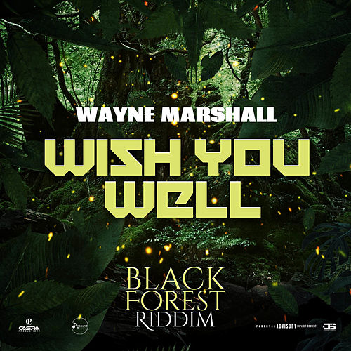 Wish You Well by Wayne Marshall
