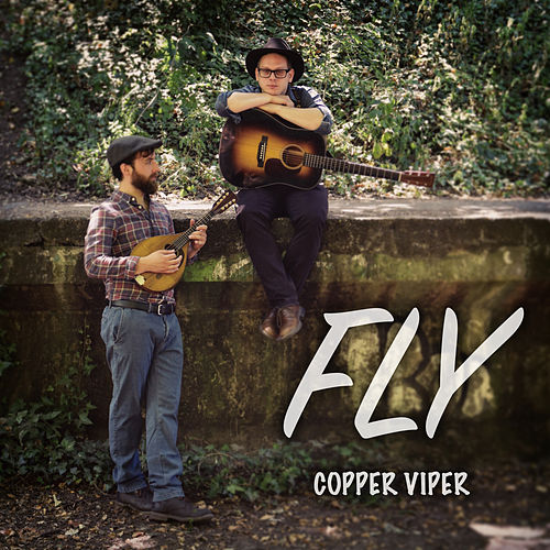 Fly by Copper Viper