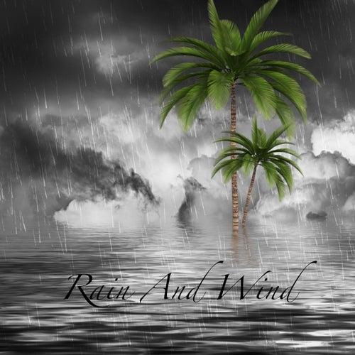 Rain & Wind de Relax Nature ASMR