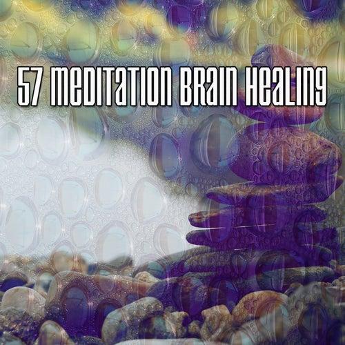 57 Meditation Brain Healing de Meditación Música Ambiente
