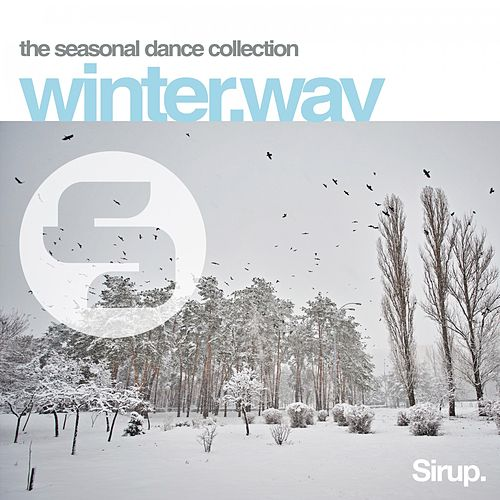 Winter.Wav de Various Artists