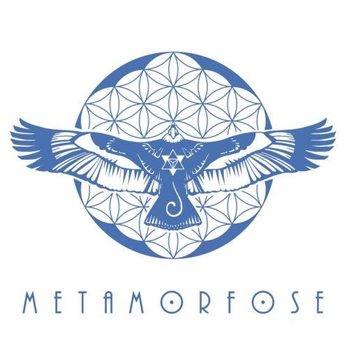 Eu Sou Geometria Sagrada de Metamorfose