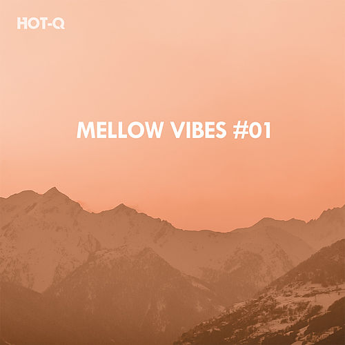 Mellow Vibes, Vol. 01 - EP de Various Artists