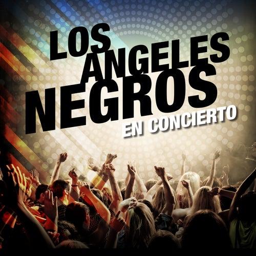 Los Angeles Negros en Concierto de Los Angeles Negros