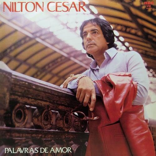 Palavras de Amor de Nilton Cesar