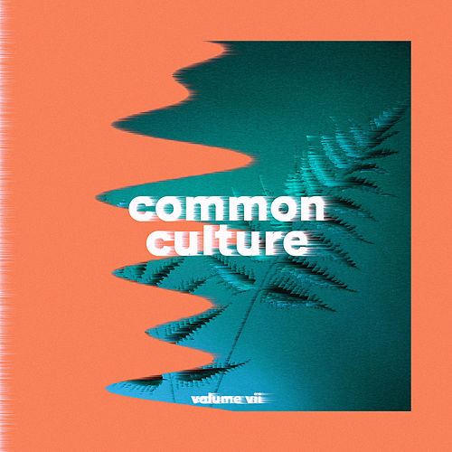 Common Culture, Vol. VII von Various Artists