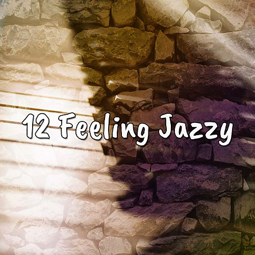 12 Feeling Jazzy von Chillout Lounge