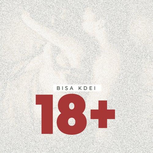 18+ by Bisa Kdei