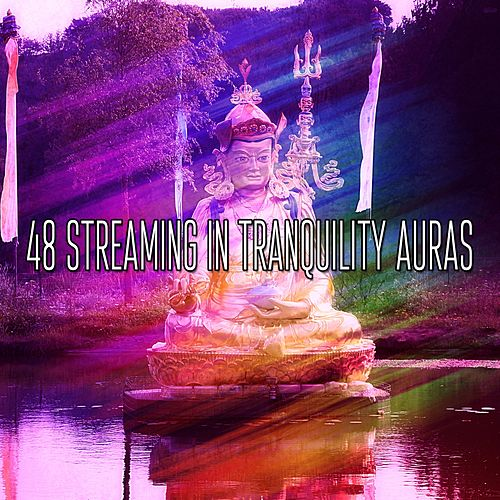 48 Streaming In Tranquility Auras by Asian Traditional Music