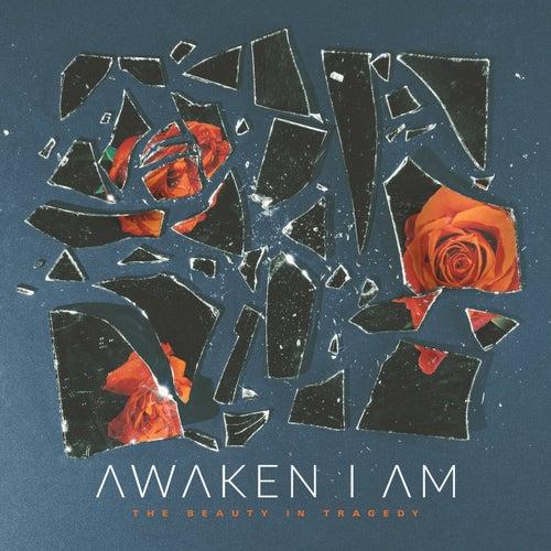 The Beauty in Tragedy by Awaken I Am
