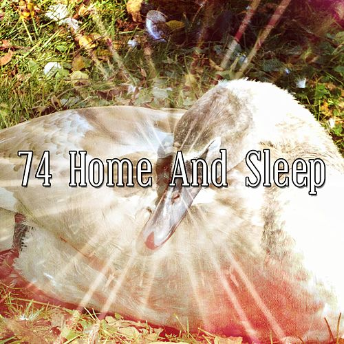 74 Home And Sleep de Smart Baby Lullaby