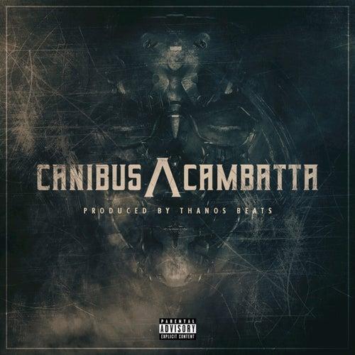 Canibus /\ Cambatta by Canibus