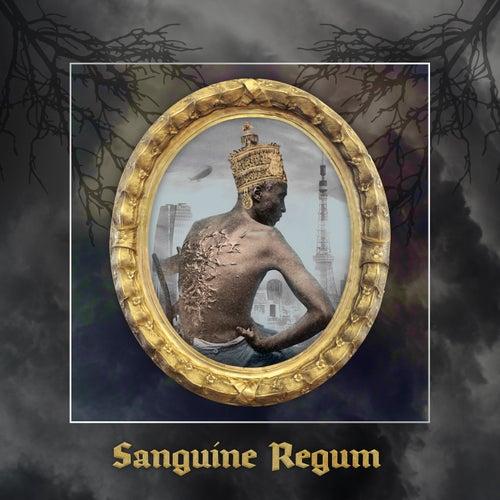 Sanguine Regum von Anu Sun