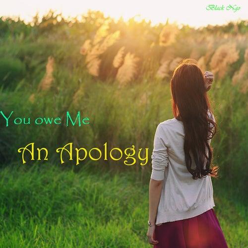 You Owe Me an Apology de Black Ngo