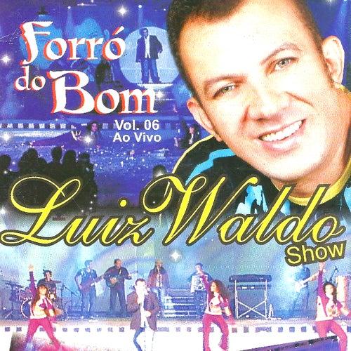 Forró do Bom, Vol. 6 (Ao Vivo) von Luiz Waldo Show