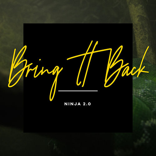 Bring It Back by Ninja 2.0