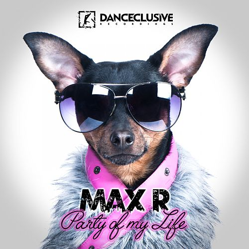 Party of My Life by Max R.