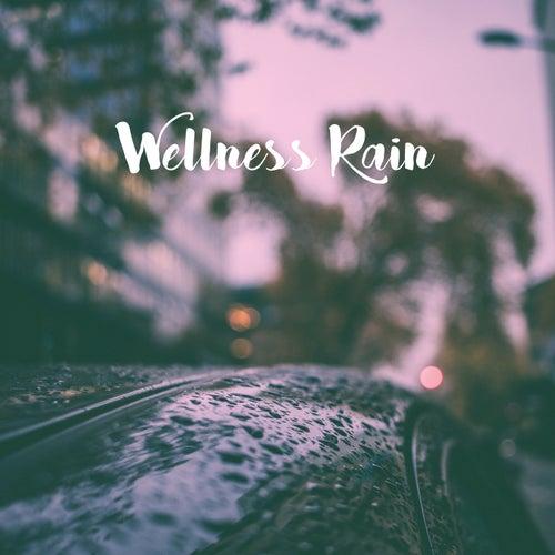 Wellness Rain by Various Artists