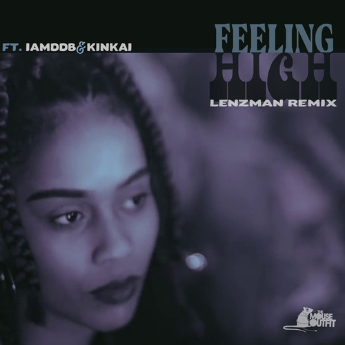 Feeling High (Lenzman Remix) by The Mouse Outfit