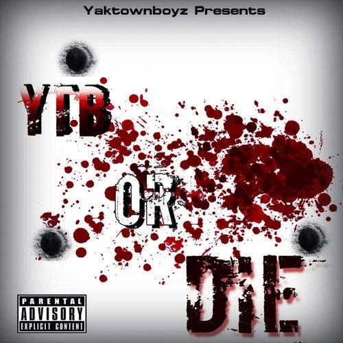 YTB or Die de YTB Kaine