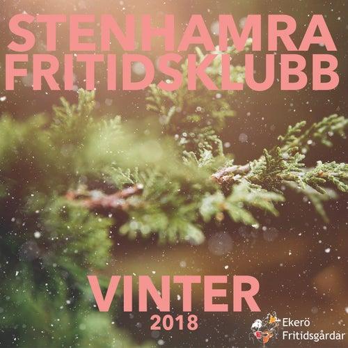 Vinter 2018 von Stenhamra Fritidsklubb