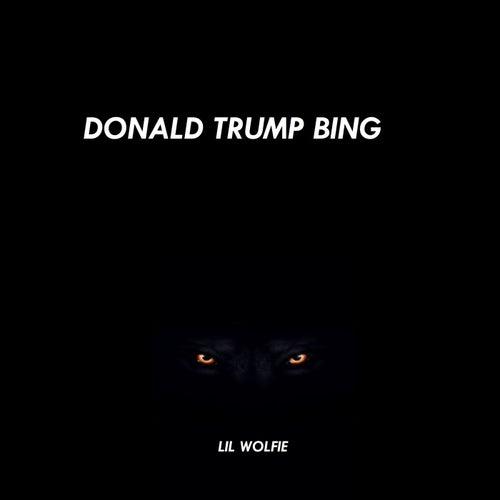 Donald Trump Bing de Lil Wolfie