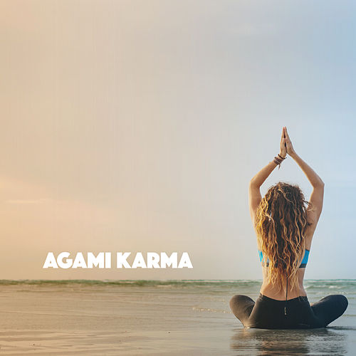 Agami Karma by Various Artists
